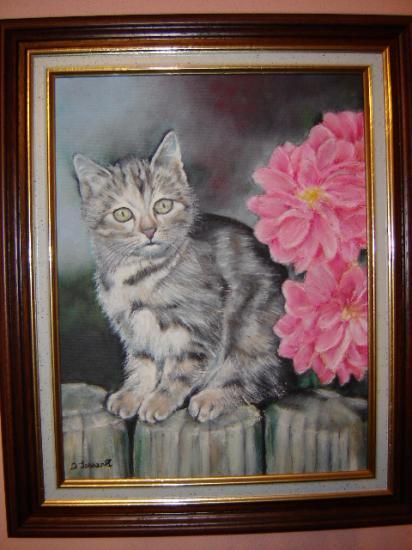 chat gris et blanc huile sur toile 5 F 27 x 35 (à vendre)